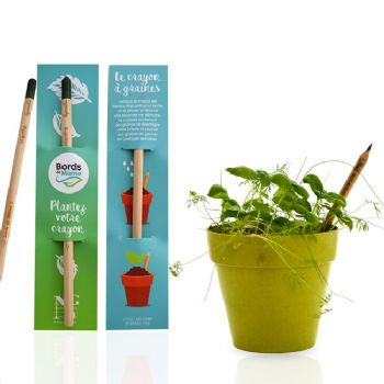 cadeau ecologíque kit de plantation crayon à planter sprout
