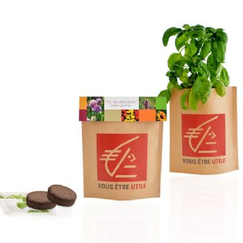 cadeau ecologíque kit de plantation kit de plantation, petit pot kraft pop-up
